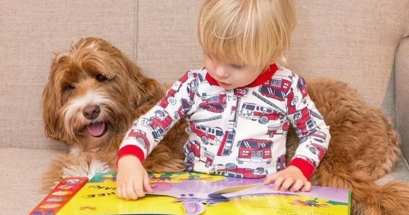 Tous deux adoptés, un chiot et un bébé sont les meilleurs amis du monde