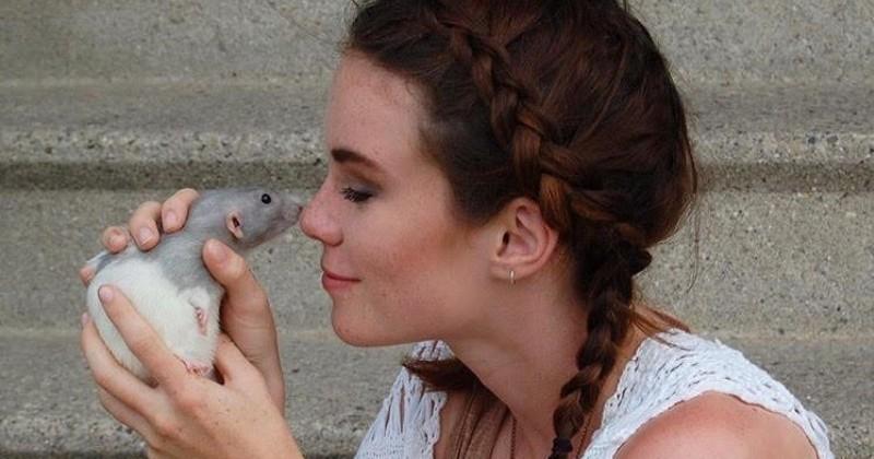 Depuis son sauvetage, ce rat ne quitte plus sa maîtresse d'une semelle