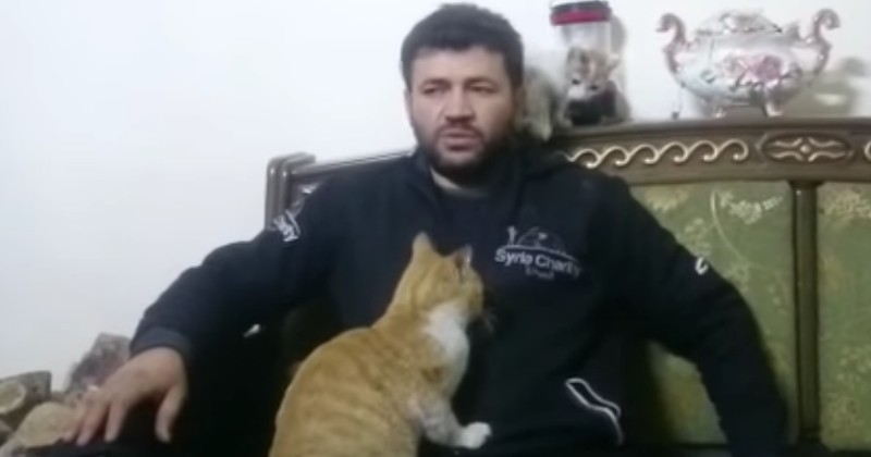 Bombardé, le seul refuge pour animaux d'Alep reçoit l'aide de la fondation 30 Millions d'Amis