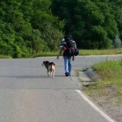 Il parcourt 1200 km avec son chien pour lutter contre le cancer