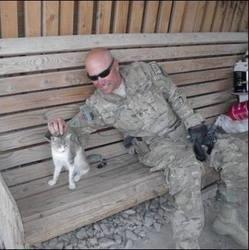 un soldat veut sauver un chat afghan