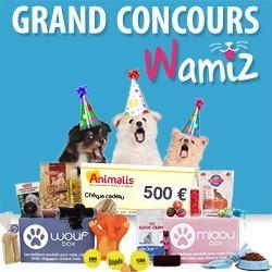 Concours Wamiz 5 ans