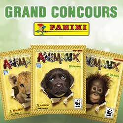 concours panini animaux