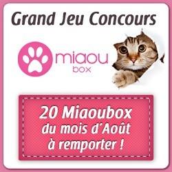 Concours : gagnez des Miaoubox pour votre chat
