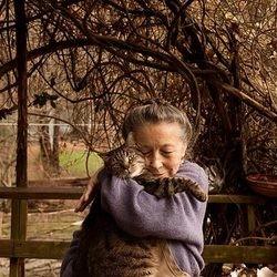 une femme adopte des centaines de chats
