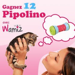 Visuel concours Pipolino