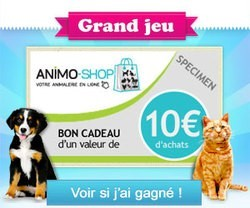 concours animo shop