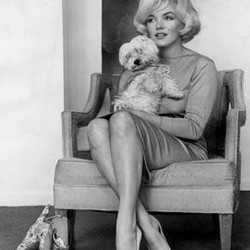 Marilyn Monroe et son chien