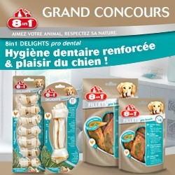 concours friandises 8in1