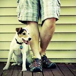 animal statut juridique objet meuble petition