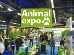 salon animal expo