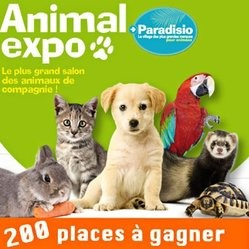animal expo concours