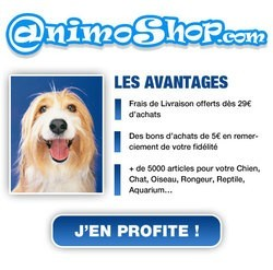 animoshop animalerie en ligne