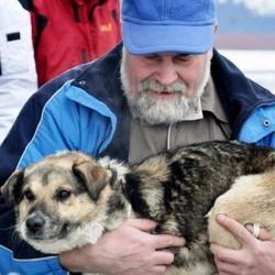 chien sauvé mer baltique