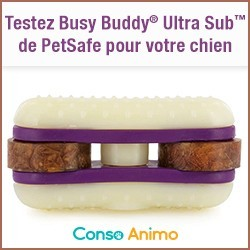 jouet pour chien Busy Buddy Ultra Sub PETSAFE