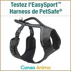 Harnais EasySport Petsafe