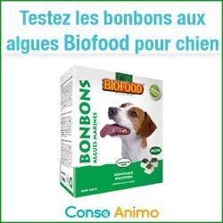 bonbons aux algues pour chien Biofood
