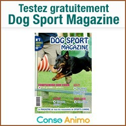 dog sport magazine