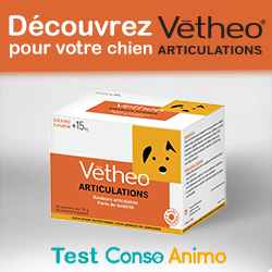 test Vetheo Articulations