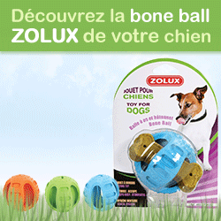 test bone ball zolux