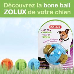 test bone ball zolux