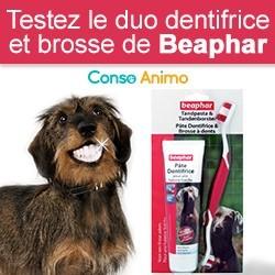 brosse à dents et dentifrice pour chien Beaphar