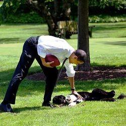 barack obama chien bo président