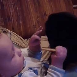 Chat VS bébé pour un biscuit
