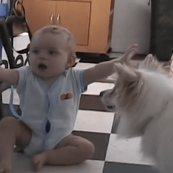 un bébé et un chien jouent à la balle