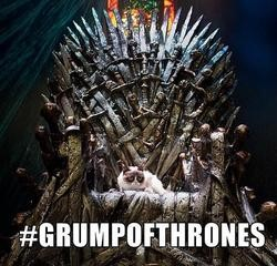 Grumpy cat game of thrones