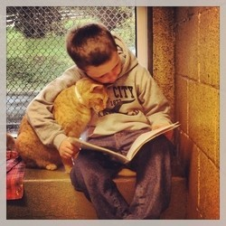 un enfant fait la lecture à un chat