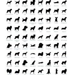 tatouage éphémères coques iphone race de chiens