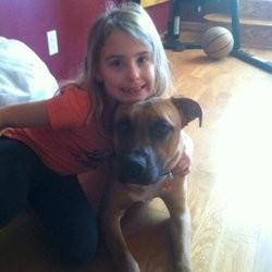 un chien sauvé à quelques heures de son euthanasie
