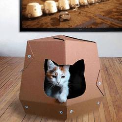 coup de coeur pour ces maisons pour chat en carton conso wamiz. Black Bedroom Furniture Sets. Home Design Ideas