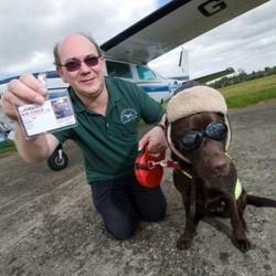 le premier chien aviateur du monde