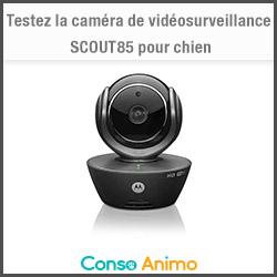 caméra vidéosurveillance scout85 motorola