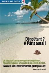 Crottes de chien a Paris aussi