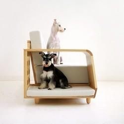 meubles pour chien