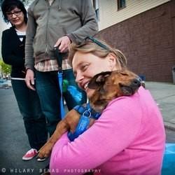 Les retrouvailles d'un chien abandonné, et de la femme qui l'a sauvé