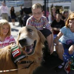 Un petit garçon de 10 ans attend son chien guide, un chien qui va transformer sa vie