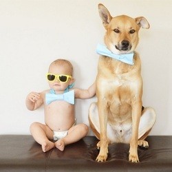un bébé et son chien