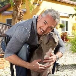 Cesar Millan et son chien Junior
