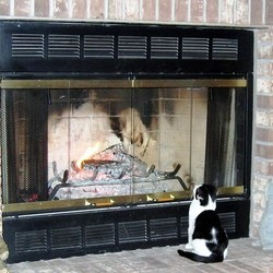 chat sauve famille incendie