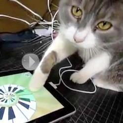 chat ipad jouet noel