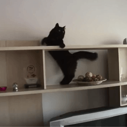 chat mission impossible