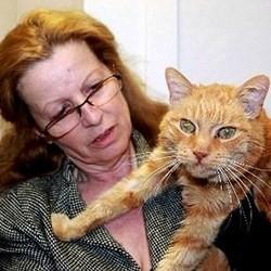 chat fugue retrouve 16 ans apres