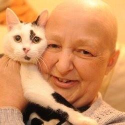 chat sauve maitresse cancer sein