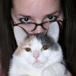 chat et femme regards