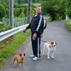 chien maltraité adoption 30 millions d'amis