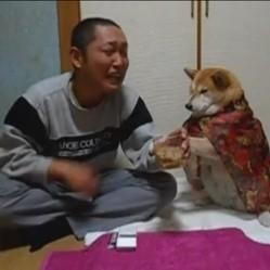 un chien empêche son maître de boire